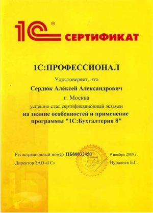 03-Проф-бухгалтер-мини