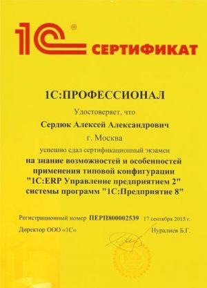 11-Проф-ERP
